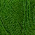Örenbayan Star Yeşil El Örgü İpi - 87-1754
