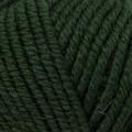 Kartopu Cozy Wool Yeşil El Örgü İpi - K1421