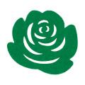 La Mia 10'lu Fıstık Yeşili Gül Bardak Altlığı - M56