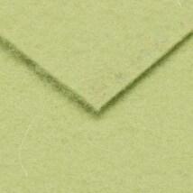 De Witte Engel Truefelt 20x30 cm 1.2 mm 100% Woolden TrueFelt, Yeşil  - VLAP625